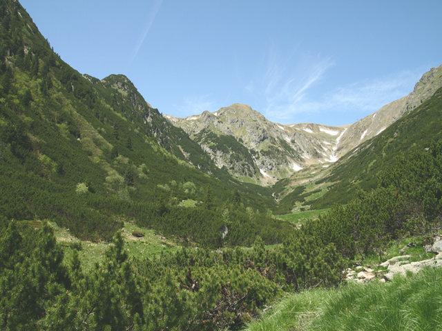 Valea Leaota