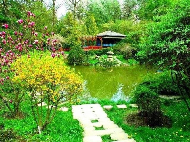 Grădina botanică Cluj