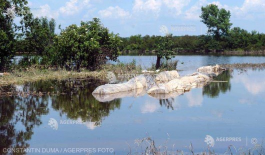 Cod portocaliu şi Cod galben de inundaţii pe râuri din judeţele Timiş şi Caraş-Severin