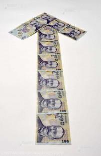 INS: Rata anuală a inflaţiei a urcat la 4,7%, în februarie
