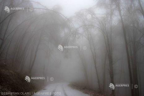 Cod galben de ceaţă densă în cinci judeţe, marţi dimineaţa
