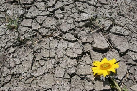 Ziua mondială pentru combaterea deşertificării şi a secetei