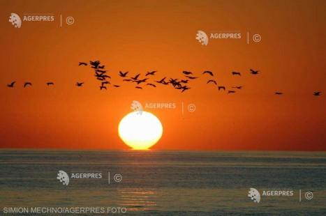 EFEMERIDE ASTRONOMICE - 29 iunie