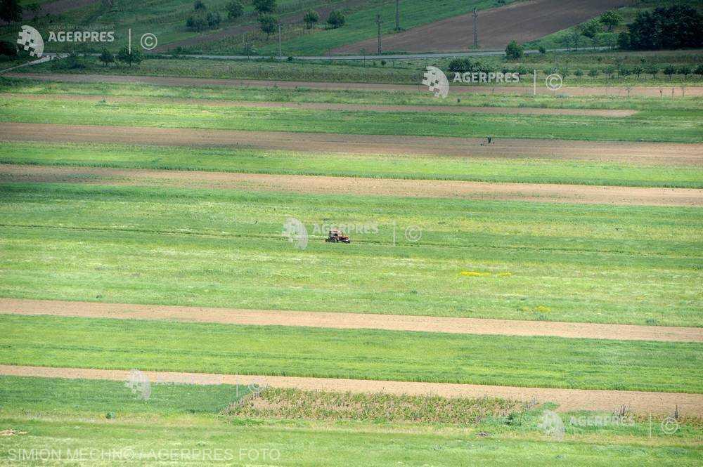 ANM: Culturile agricole se vor dezvolta, în general, normal în majoritatea regiunilor, în perioada 4-10 mai