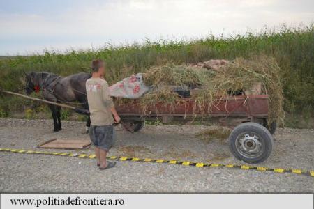 Botoșani: Țigări de contrabandă în valoare de 136.000 de lei, descoperite de polițiștii de frontieră