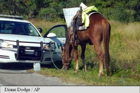 SUA: O femeie a fost arestată pentru conducerea în stare de ebrietate... a unui cal