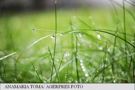 Regim termic oscilant și condiții de ploaie aproape în fiecare zi, în intervalul 20 martie - 2 aprilie (prognoză)