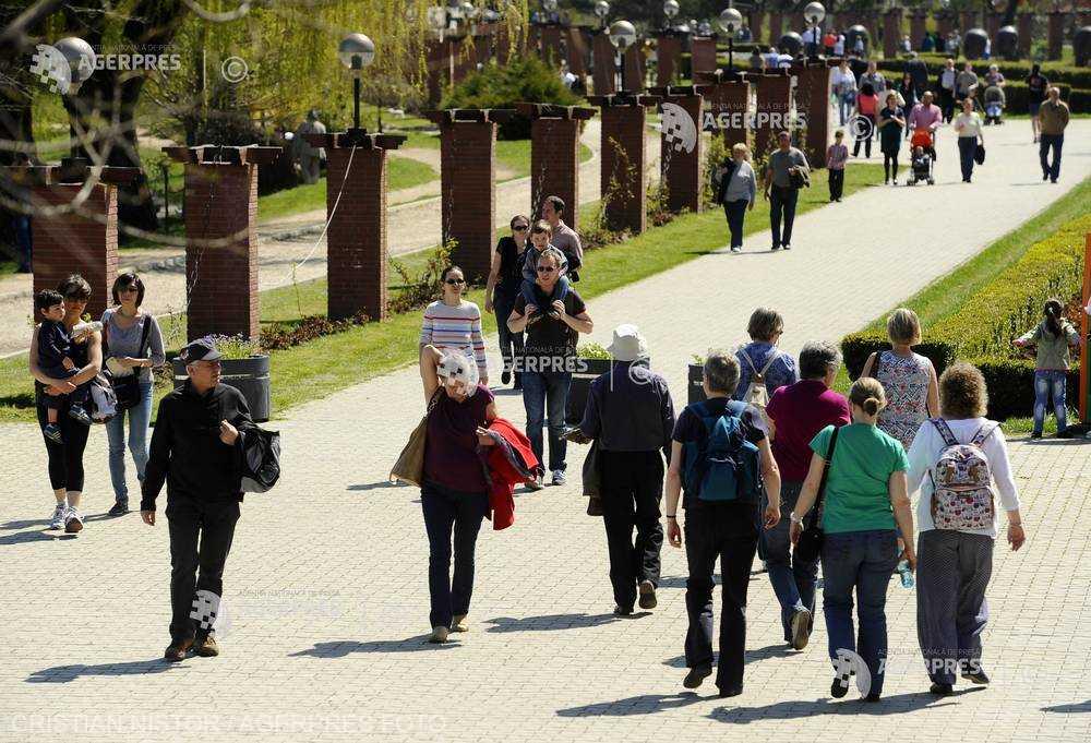 Mersul pe jos sau grădinăritul timp de 10 minute pe săptămână poate reduce riscul de deces (studiu)