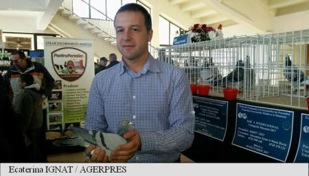 REPORTAJ Brăila: Marian Dragomir, primarul pasionat de porumbei