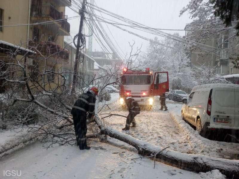 IGSU - efecte de vreme rea în 16 judeţe şi Capitală: Peste 150 de arbori doborâţi din cauza vântului şi a zăpezii