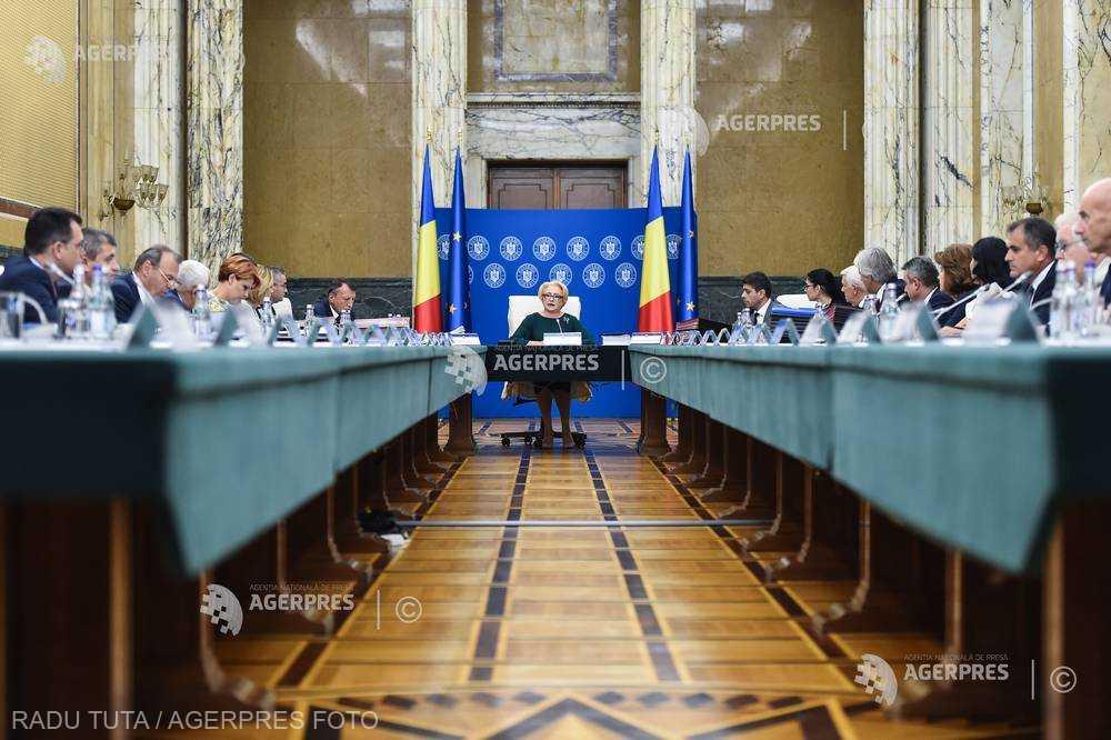 Guvernul: Acuzaţiile preşedintelui Iohannis privind pesta porcină - lipsite de temei; să înceteze să exploateze politic situaţia