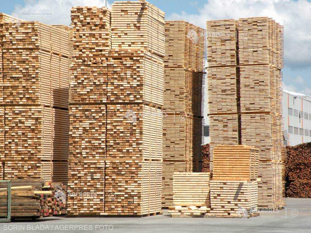Fordaq: România a trecut de la o criză de mediu la criza lemnului de foc şi acum la un blocaj economic în sectorul forestier