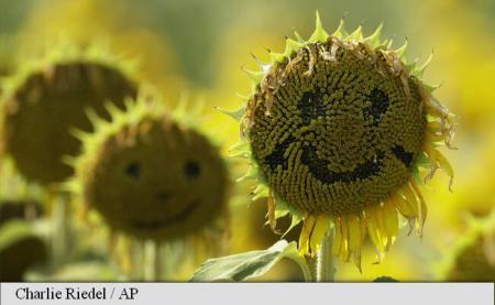 Ziua mondială a zâmbetului
