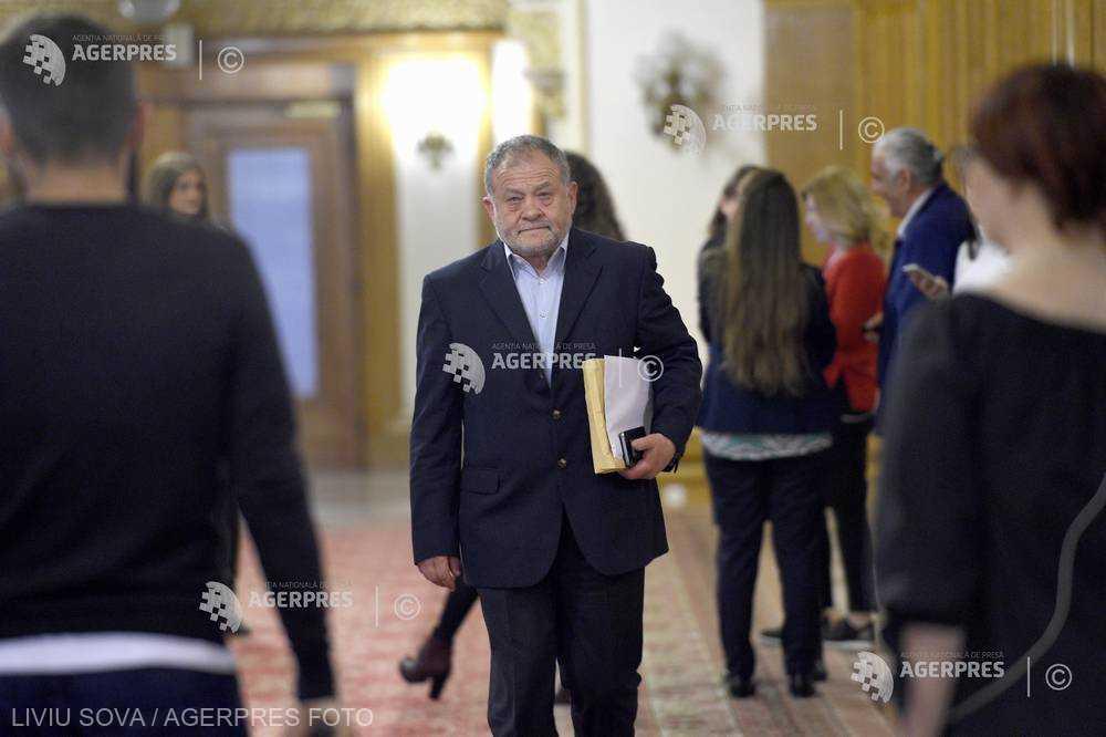 Buzatu: Viorica Dăncilă - votată de CExN al PSD aproape în unanimitate