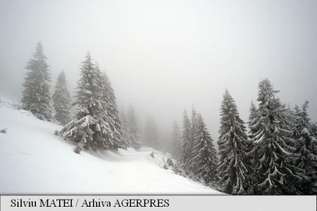 Cod Galben de ninsori, vânt puternic pentru zona de munte și de intensificări ale vântului pentru Oltenia, Muntenia și Dobrogea
