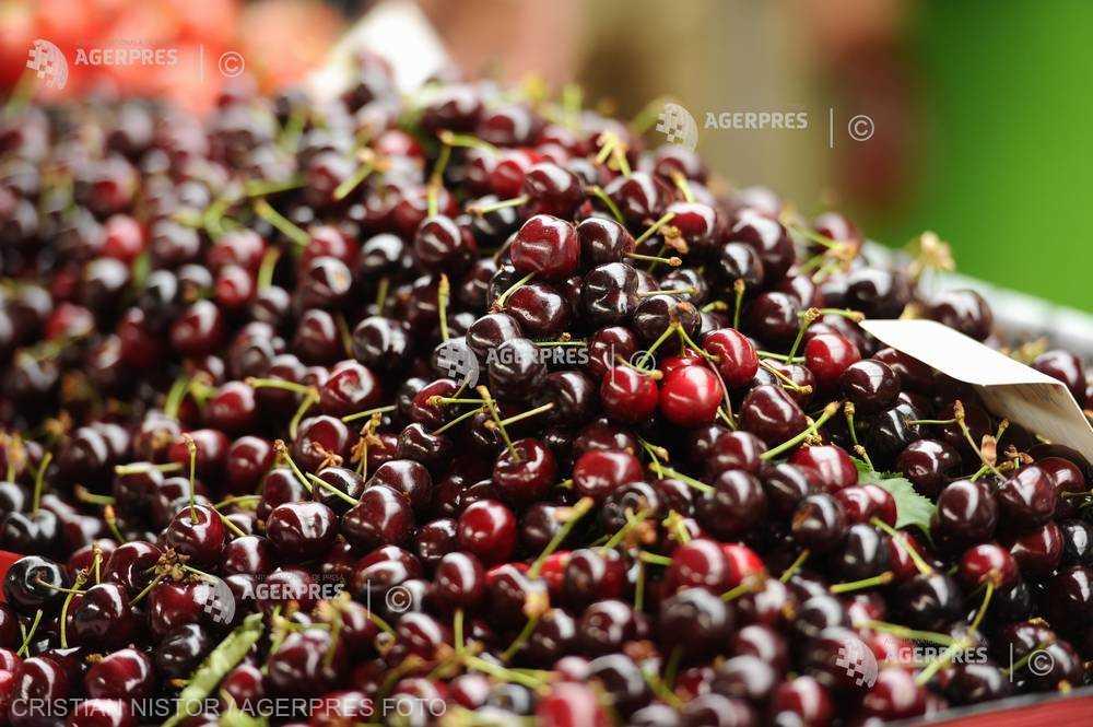 ANSVSA: Peste 1,3 tone de cireşe, provenite din Turcia, contaminate cu pesticide; 564 kg au fost retrase de la comercializare