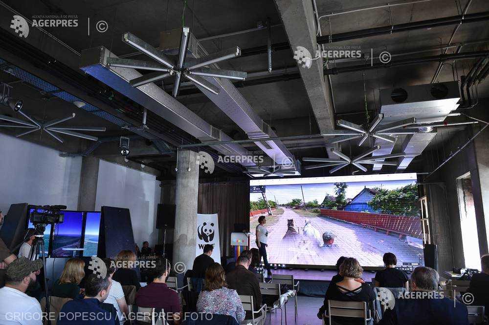 Delta Dunării poate fi explorată virtual pe Google Maps, din această săptămână