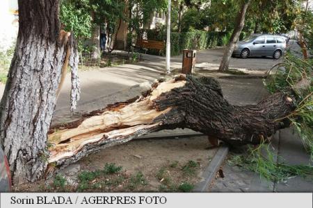 Bihor: 37 de localități din sud-estul județului, afectate de furtună