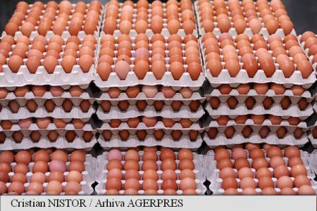 UCPR: Prețul ouălor a crescut la poarta fermei cu 24% în luna octombrie;