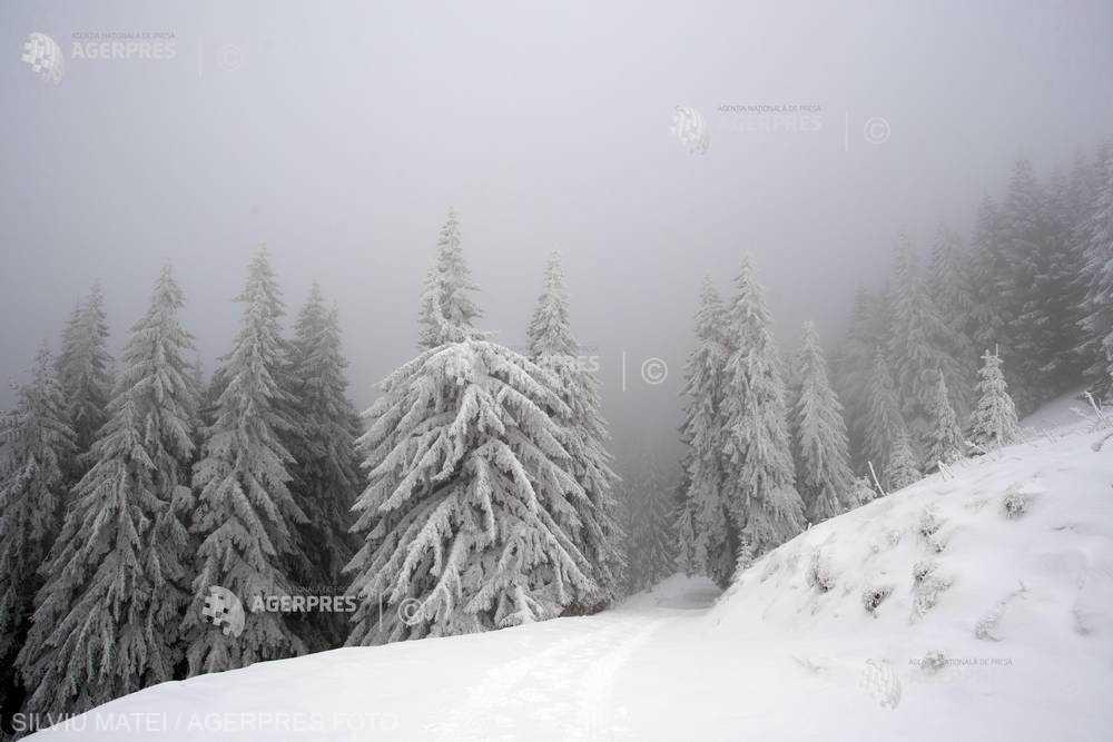 Neamţ: Salvamontiştii anunţă pericol de avalanşe în Ceahlău şi restricţionează accesul pe munte