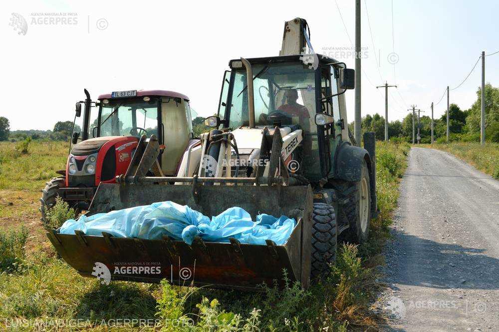 Pagubele fermierilor români din cauza pestei porcine africane pot fi acoperite din bugetul CE (asociaţie)