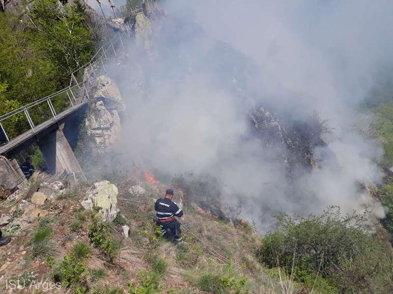 Incendiu de vegetaţie pe Transfăgărăşan, în zona Cetăţii Poenari