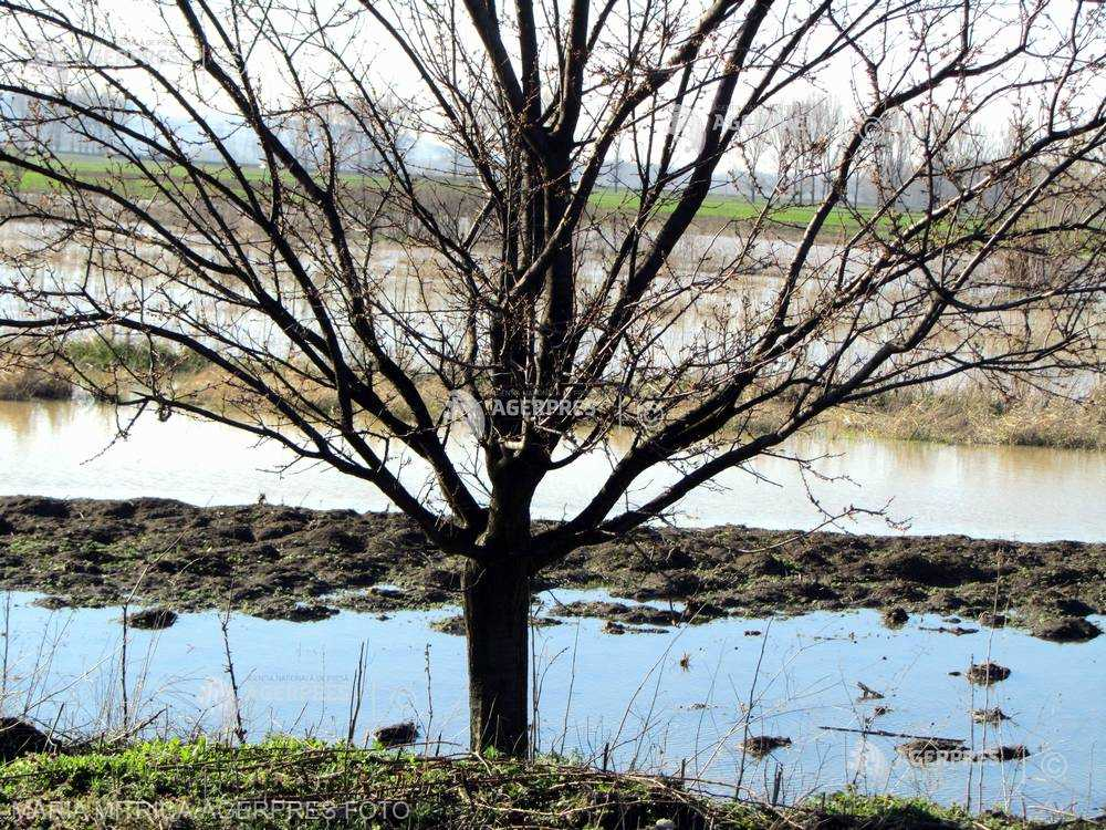 Cod galben de inundaţii pe râuri mici din judeţele Mehedinţi şi Gorj până marţi după-amiaza