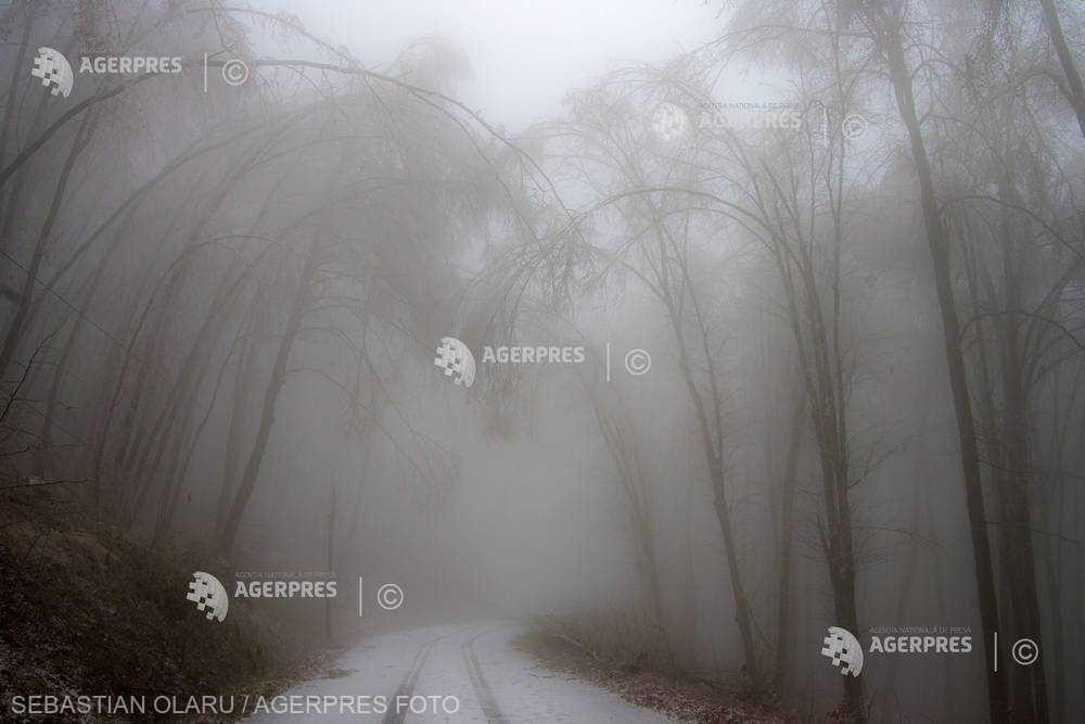 Ceaţă densă în 14 judeţe; ploi, burniţă şi polei în judeţele Bacău şi Neamţ