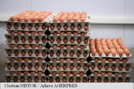 Scandalul ouălor contaminate cu insecticid, un dezastru pentru Olanda dar o oportunitate pentru rivali