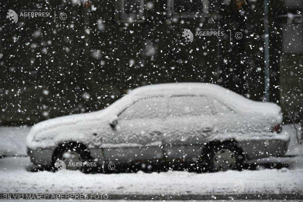 Avertizare de ninsori şi viscol în judeţe din zona Litoralului, până la ora 14:00