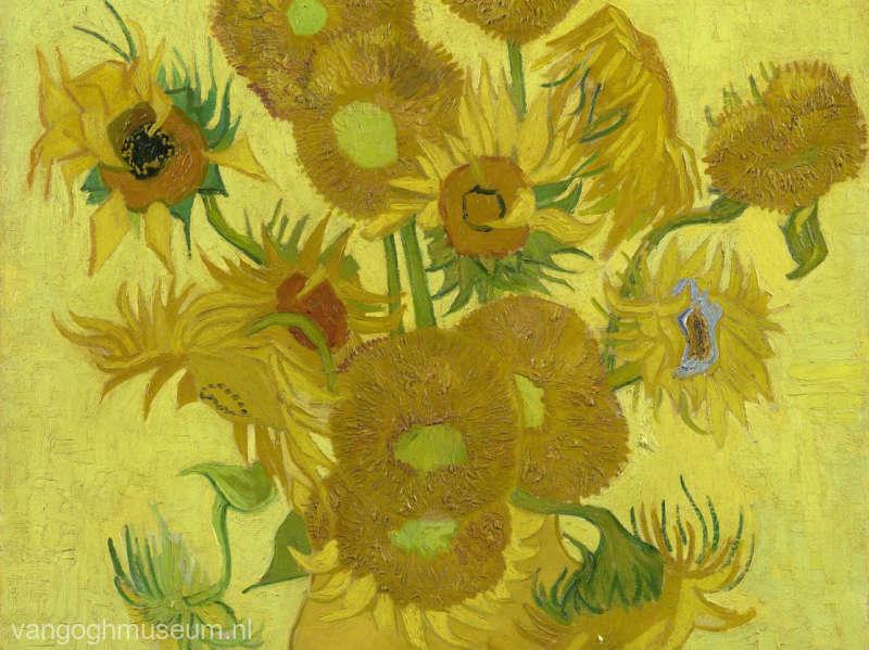 Muzeul Van Gogh va restaura pânza 'Floarea Soarelui' a pictorului olandez timp de şase săptămâni